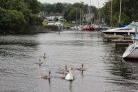 Boating river shannon 3